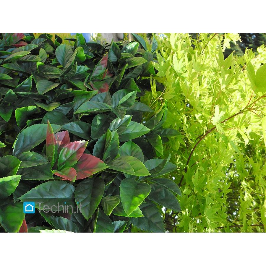 Siepi Artificiali Da Giardino: Catalogo fiori e piante rampicanti ...