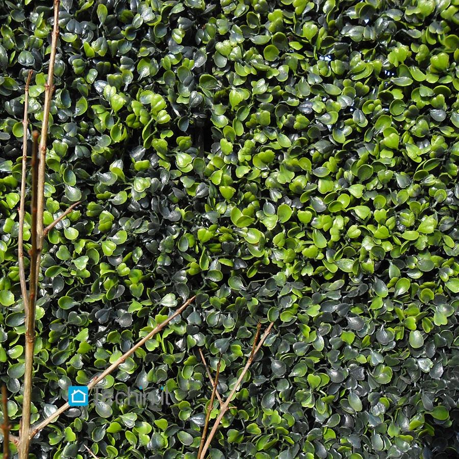 Siepi prezzi siepe finta piante rampicanti vendita siepe for Siepe sintetica artificiale
